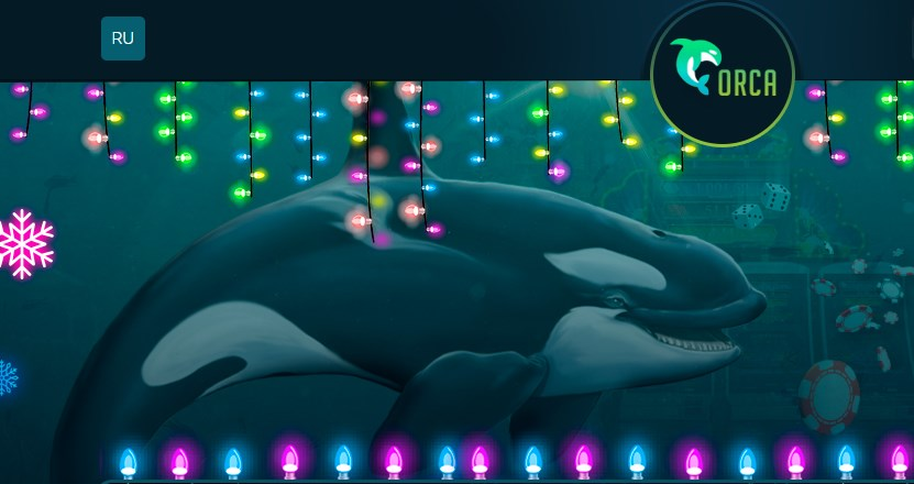 orca88 com